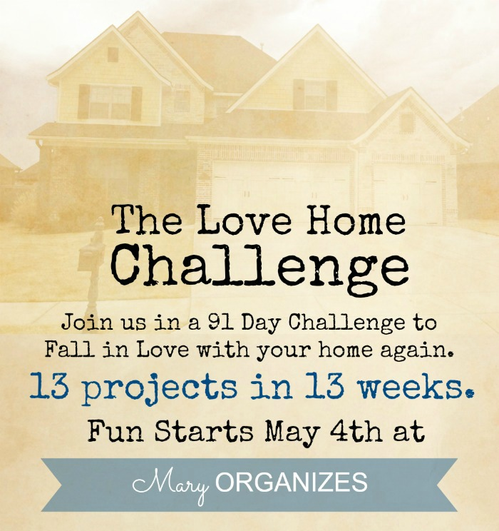 The Love Home Challenge - teaser