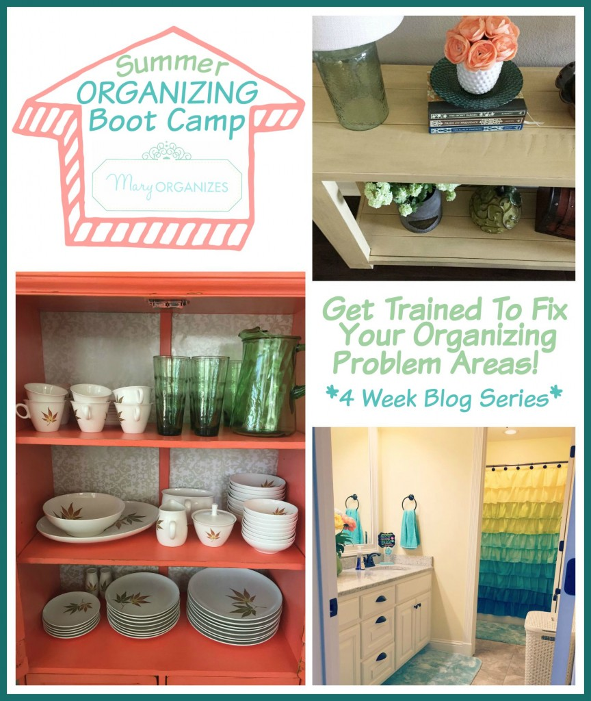 Summer Organizing Boot Camp 2015
