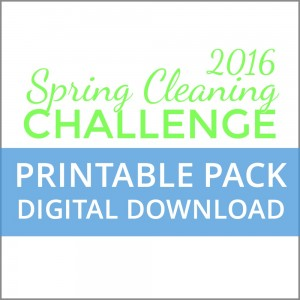 Spring Cleaning _shop tab