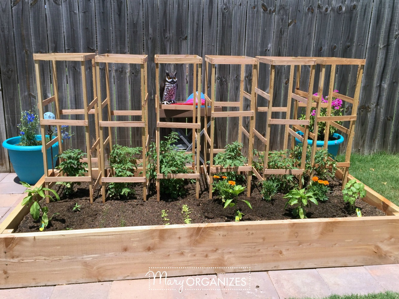 DIY Tomato Cage Tutorial for the Organic Garden 5