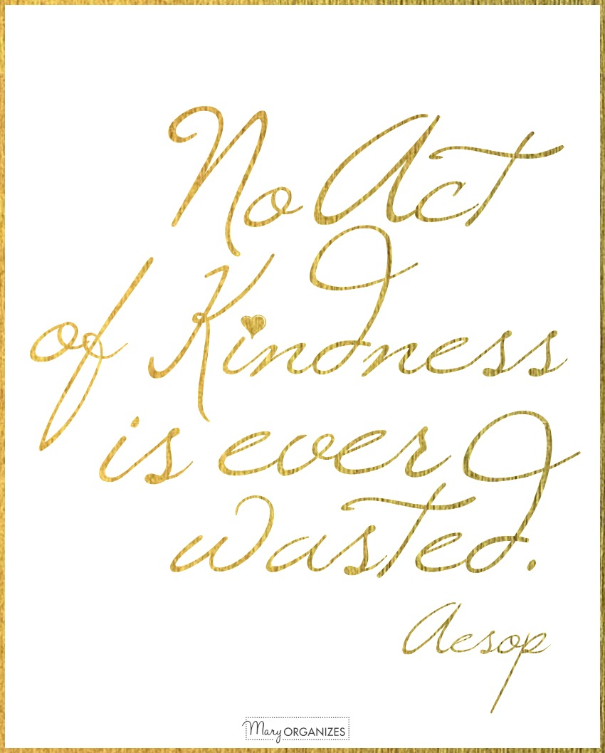 no-act-of-kindness-is-ever-wasted-aesop-maryorganizes