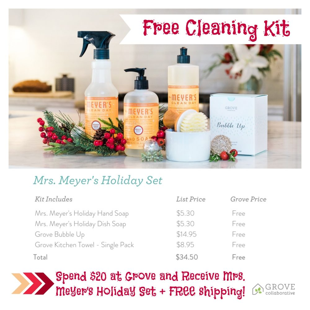 FREE Cleaning Kit